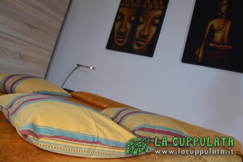 Lacuppulata24