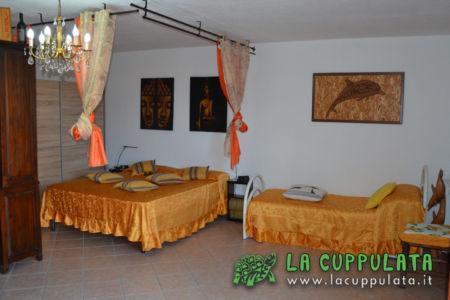 lacuppulata23